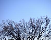 20150119_141509