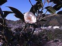 20150322_234023